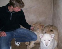 me with some lion cubs